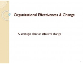 Organizational Effectiveness & Change