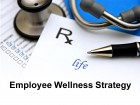 Employee Wellness Strategy