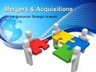 Mergers & Acquisitions - HR Strategic Analysis